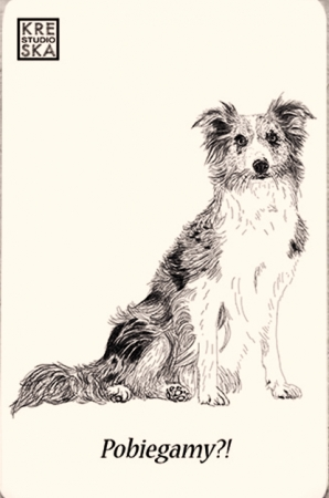 Magnes - Border Collie - Grafika 23